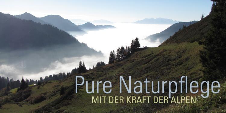 Blick auf das Vorarlberger Rheintal
